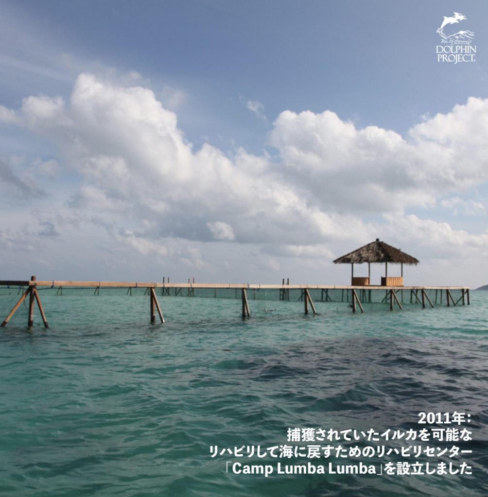 捕獲されていたイルカを可能なリハビリして海に戻すためのリハビリセンター