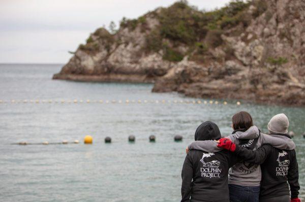 日本のイルカの追い込み漁活動